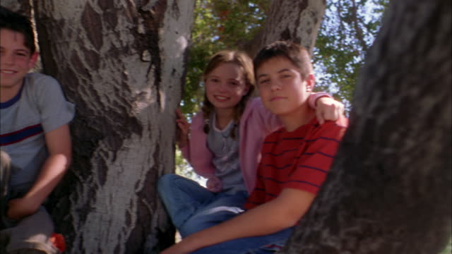 Low angle girl and two boys sitting in tree + smiling at CAM