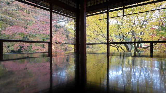 low angle, glass room overlooks autumn foliage - 寺院 個影片檔及 b 捲影像
