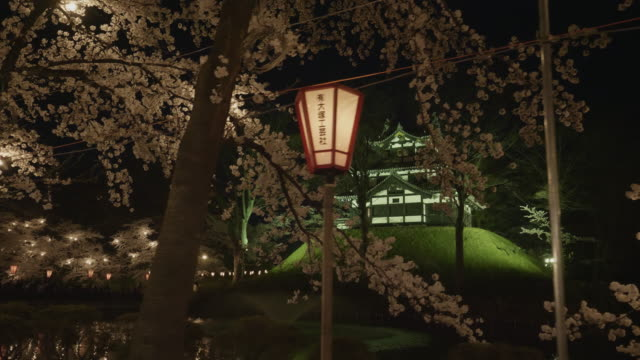 low angle, illuminated temple in tagata park at night - oriental garden stock videos and b-roll footage