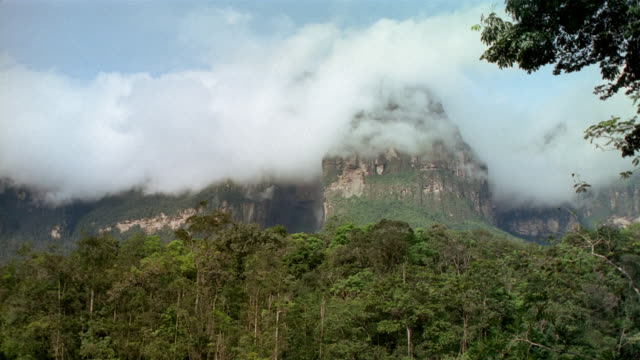 Low angle long shot clouds forming on mountainside as Angel Falls waterfall cascades down / Canaima National Park