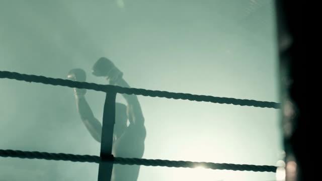low angle ms male boxer victorious. - 格闘技リング点の映像素材/bロール