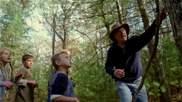 low angle man leading children on a hike / showing kids bark on tree / giving boy plant to smell - plant bark stock videos and b-roll footage