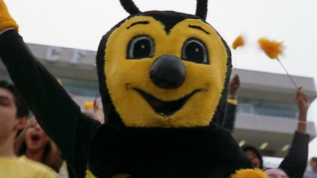 Low angle medium shot bee sports cheering in front of crowd