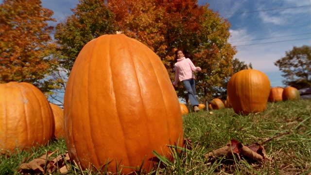 low angle medium shot girl picking up pumpkin and walking away - pumpkin stock videos & royalty-free footage