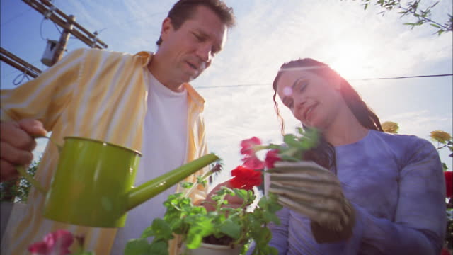 Low angle medium shot man and woman watering flower pots on greenhouse terrace
