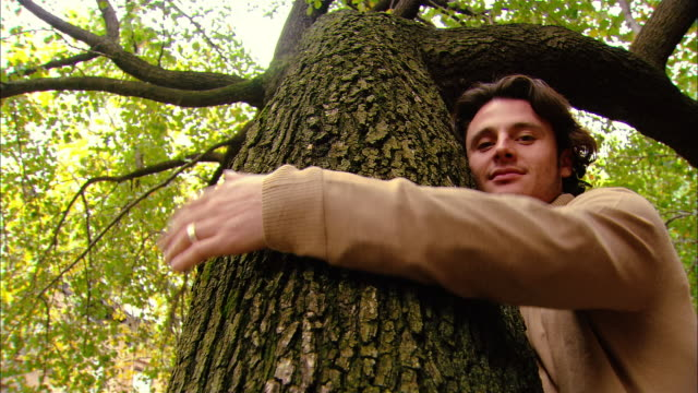 low angle medium shot man hugging tree/ brooklyn, new york - tree trunk stock videos & royalty-free footage