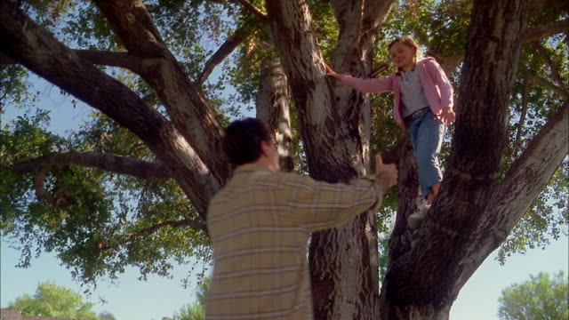 Low angle medium shot man lifting young girl down from tree