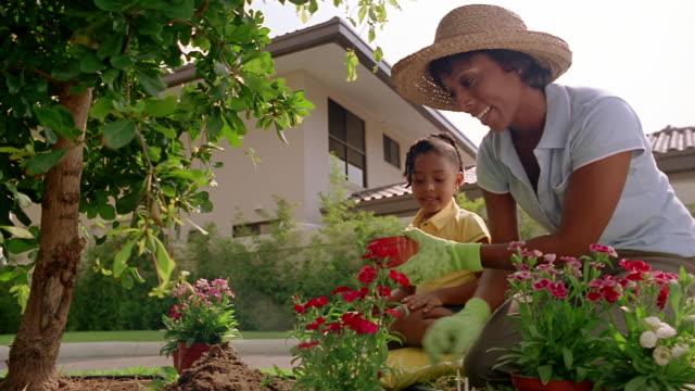 low angle medium shot mother and daughter planting flowers in garden - trädgårdshandske bildbanksvideor och videomaterial från bakom kulisserna