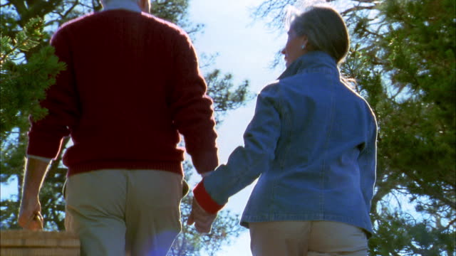 low angle medium shot rear view senior couple walking and holding hands w/picnic basket - 50 59 years stock videos & royalty-free footage
