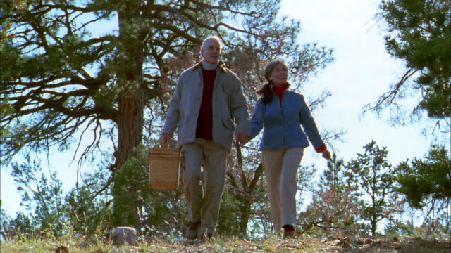 low angle medium shot senior couple walking and holding hands w/picnic basket - picnic basket stock videos and b-roll footage