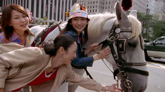 Low angle medium shot three women petting horse and smiling at CAM / New York City