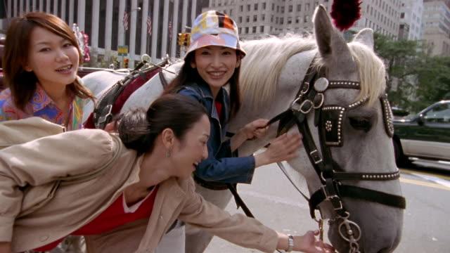 low angle medium shot three women petting horse and smiling at cam / new york city - 2004点の映像素材/bロール