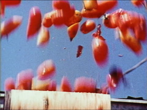 vidéos et rushes de 1970 low angle medium shot tomatoes flying out of machine - jetée