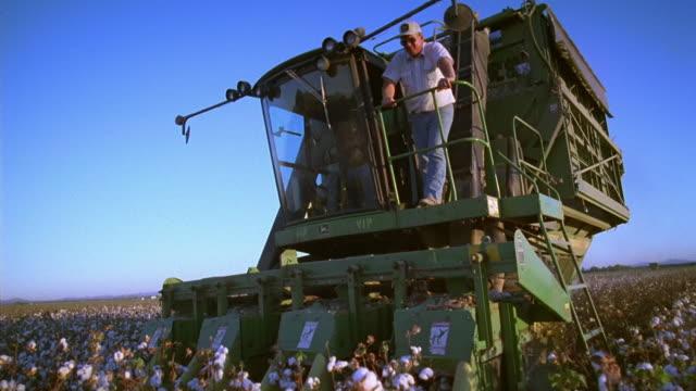 vídeos y material grabado en eventos de stock de low angle medium shot tracking shot middle age male farmer standing on combine as it plows through cotton field / thatcher, arizona - cotton
