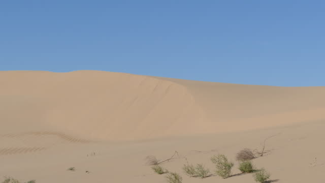 4k low angle of small faded brown yellow sand dune pan left across the ridge pale blue sky above - low angle view stock videos & royalty-free footage