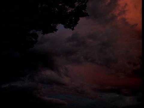 vidéos et rushes de ms low angle pan right across stormy dusk sky, amazon - cumulonimbus