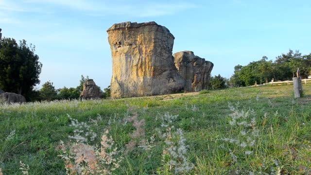 低角度のパン: タイの mo ヒン カオ チャイヤプームの石 henge の花園 - 石柱点の映像素材/bロール