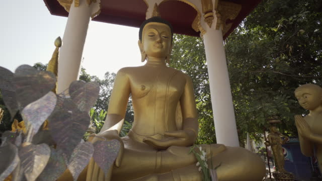 low angle panning shot of golden buddha statues at shrine against trees - vientiane, laos - shrine stock videos & royalty-free footage