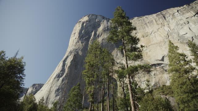 vídeos de stock, filmes e b-roll de low angle panning shot of scenic view of trees and el capitan / yosemite valley, california, united states - parque nacional de yosemite