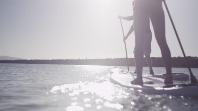 stockvideo's en b-roll-footage met low angle, people paddleboard in slow motion - peddelen