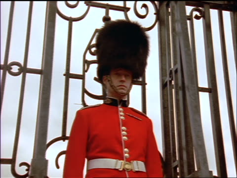 low angle portrait dolly shot around royal guard standing in front of gate / london - 近衛兵点の映像素材/bロール