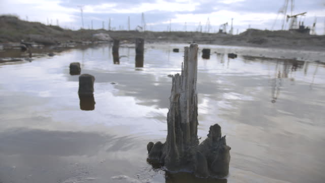 low angle shot across rotten wooden posts in a large pool of water at an oil field near baku. - baku video stock e b–roll