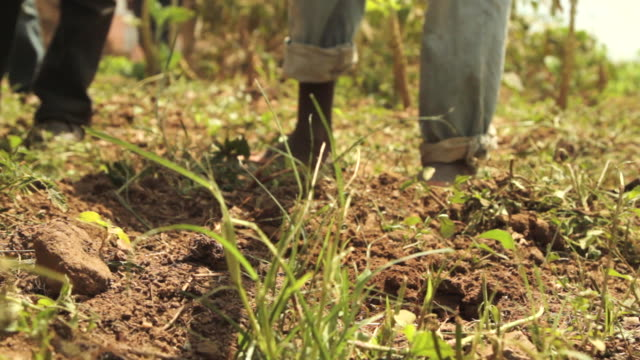 low angle shot of a person using a hoe to dig up a patch of earth. - jäthacke stock-videos und b-roll-filmmaterial