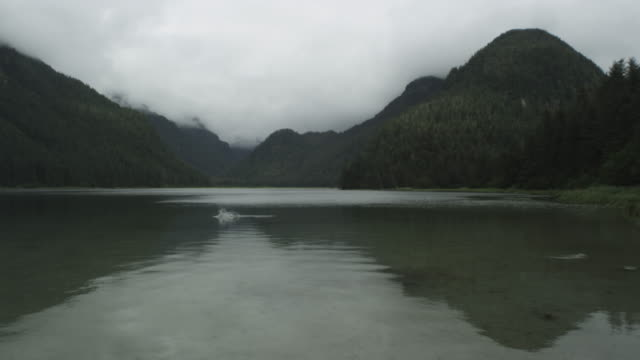 low angle shot of misty mountains, sea, fish jumping, alaska, 2011 - sötvatten bildbanksvideor och videomaterial från bakom kulisserna