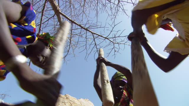 low angle shot of three woman grinding - mortar and pestle stock videos and b-roll footage