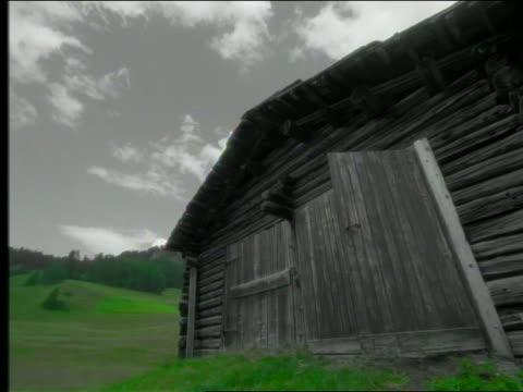 vídeos de stock, filmes e b-roll de grey low angle slow motion cow exiting barn on hilly pasture + passing camera - celeiro
