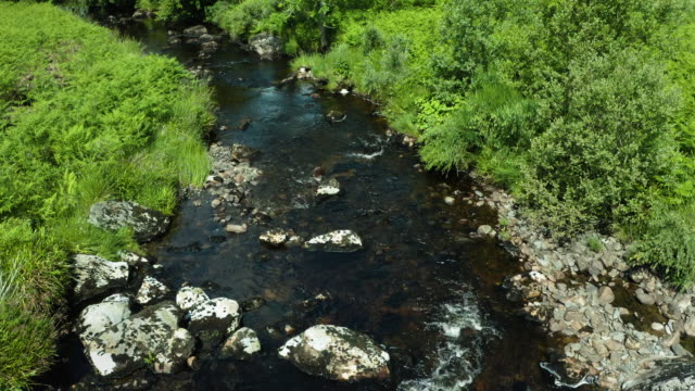 low angle slow motion drone view as it flies along a small scottish river on a summer day - johnfscott stock videos & royalty-free footage