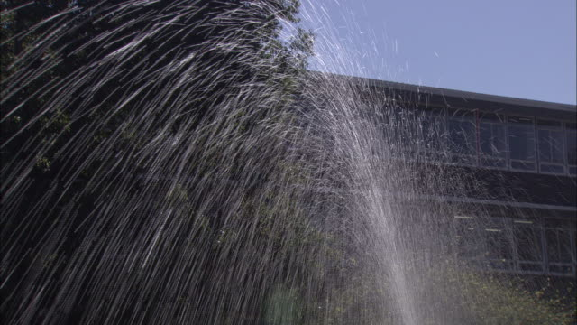 low angle static - a sprinkler rotates as it sprays water on a lawn. / south africa - sprinkler stock videos and b-roll footage
