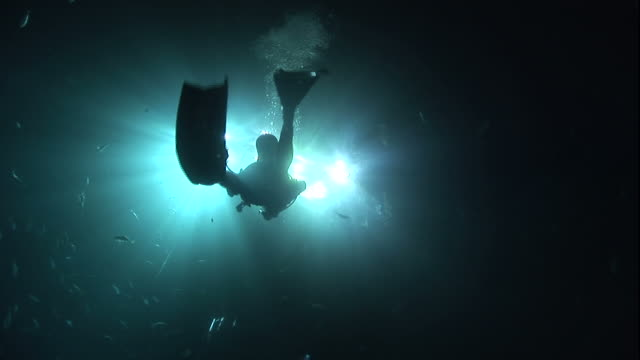 Low Angle static - Fish swim past a scuba diver that swims toward surface lights. / Bahamas
