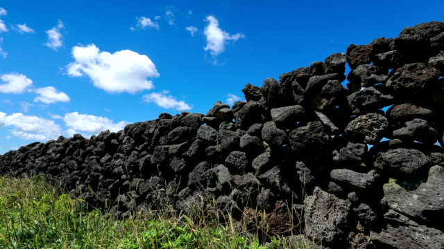 low angle stone wall in jeju island and blue sky - furzen stock-videos und b-roll-filmmaterial