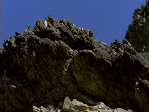 mcu low angle tilt down, rocks falling from cliff, oman - rock stock videos & royalty-free footage