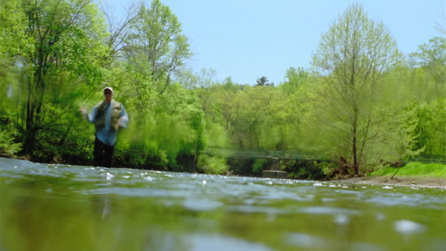 low angle tilt up from underwater to long shot man fly fishing in stream with trees in background - fisherman stock videos & royalty-free footage