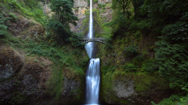 low angle time lapse shot of bridge over beautiful multnomah falls amidst plants in forest - portland, oregon - multnomah falls stock videos & royalty-free footage