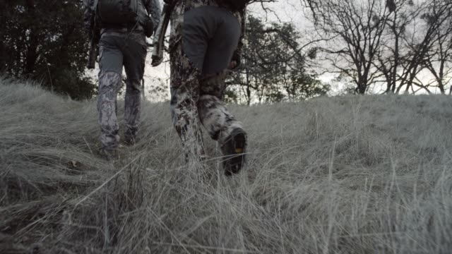 low angle tracking shot, hunters walk in rural field - hunting sport stock videos & royalty-free footage
