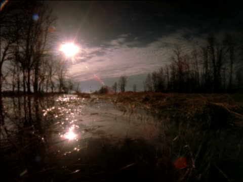 low angle tracking shot over marsh with time lapse clouds above / rocky mountains, colorado - 1997 stock videos and b-roll footage