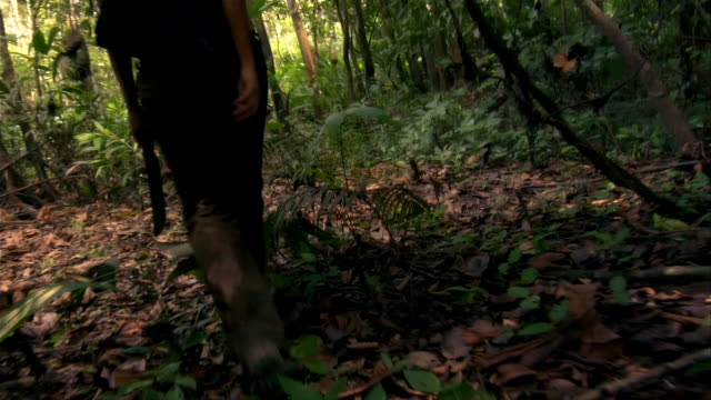 Low angle tracking shot woman walking with machete in rainforest / The Amazon, Brazil