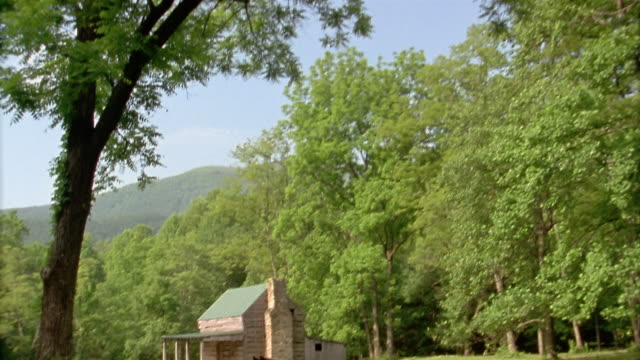 low angle trees / tilt down crane shot two horses grazing on lawn / log cabin in background / shenandoah national park / virginia - two animals stock videos & royalty-free footage