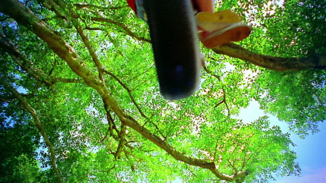 low angle two young girls swinging on tire swing attached to tree / florida - tyre swing stock videos & royalty-free footage