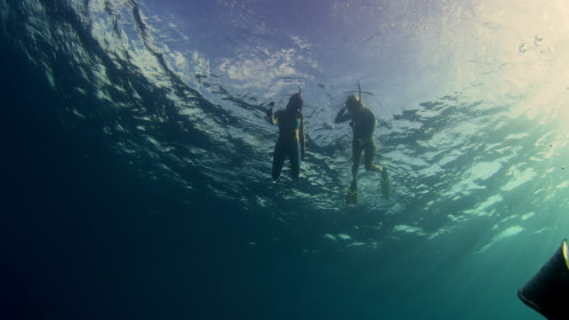 low angle underwater shot looking up at two girls snorkeling - turtle bay hawaii stock videos & royalty-free footage