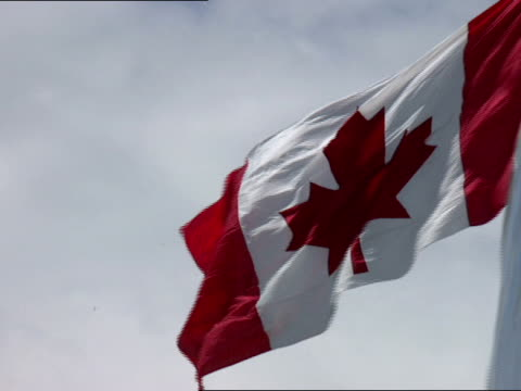 low angle - canadian flag stock videos & royalty-free footage