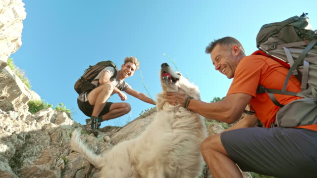 low angle video of father and son having a great time with dog climbing a mountain - mature men stock videos & royalty-free footage