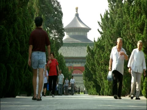 vidéos et rushes de low angle view down tree-lined path to temple of heaven, beijing, china - temple du ciel