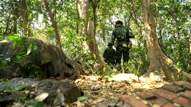 low angle view: group of Fully Equipped and Armed Soldier is walking in a tropical forest