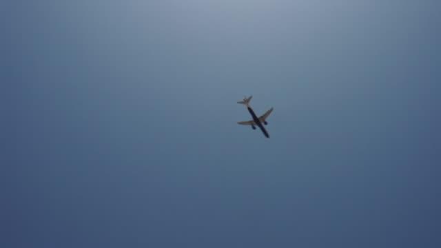 low angle view of a plane flying over a palm tree - tropiskt träd bildbanksvideor och videomaterial från bakom kulisserna
