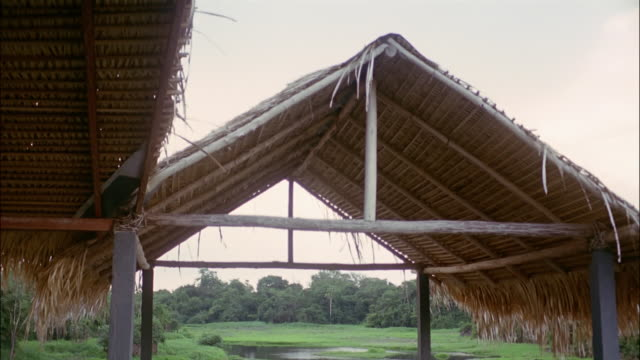 low angle view of a thatched roof / the amazon, brazil - strohdach stock-videos und b-roll-filmmaterial