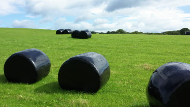 low angle view of bales of silage or hay wrapped in black plastic in a field in rural dumfries and galloway, south west scotland - johnfscott stock videos & royalty-free footage